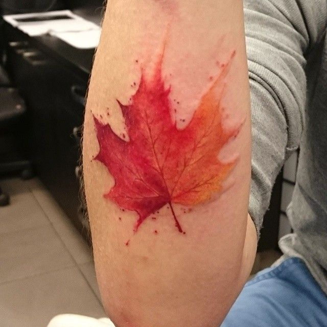 little awesome autumn leaf for tonight watercolor tattoo inspiration pinterest leaves. Black Bedroom Furniture Sets. Home Design Ideas