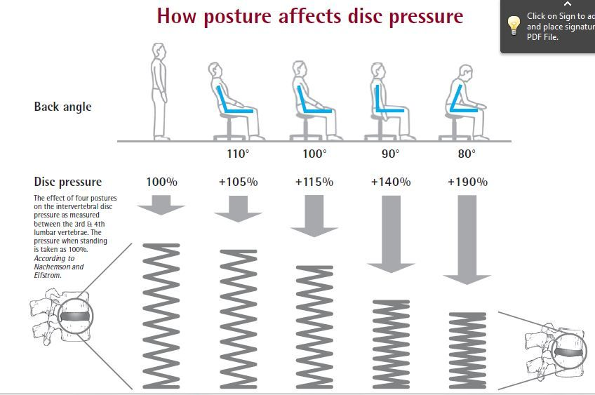 Chart of pressures in the discs of the lumbar spine