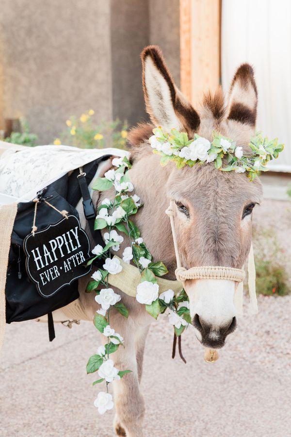 Romantic Desert Themed Wedding in Arizona | Wedding themes ...