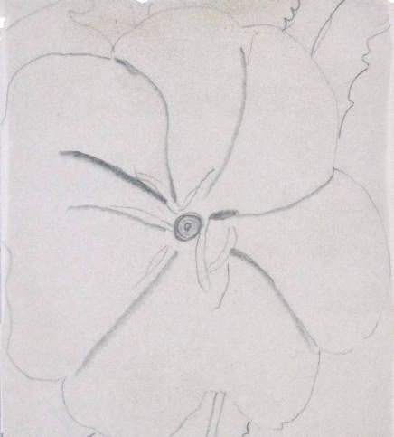 Untitled (White Flower on Red Earth) :: Drawings, Paintings & Sculpture