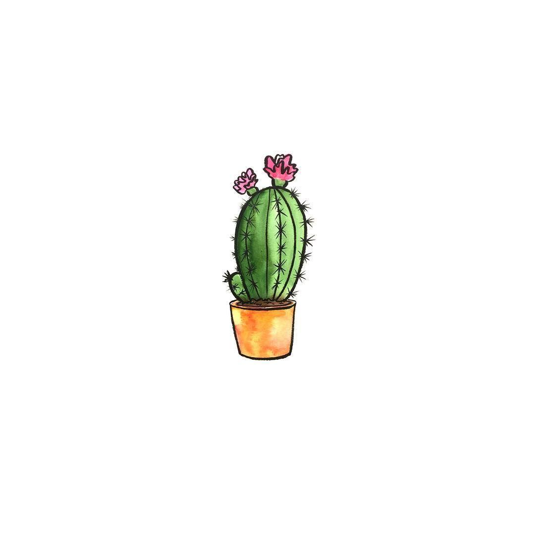 watercolor cactus   Cute wallpapers, Mini drawings, Watercolor cactus