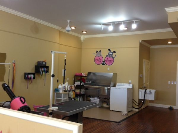 grooming salon photos - Yahoo Search Results | Fit n trim doggie ...