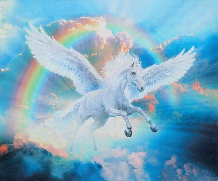 panel pegasus pferd einhorn regenbogen flügel wolken
