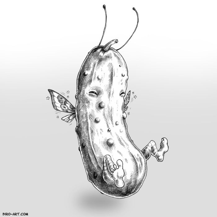 1000+ images about Pickle Cider on Pinterest   Steam punk, Best pickles and Beer brands