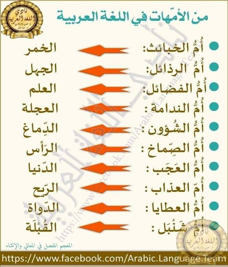 Pin By فلسطينية ولي الفخر On لغتي يا لغة الامجاد Learning Arabic Beautiful Arabic Words Wonder Quotes