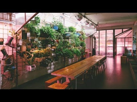 ****The First InStore Farm in Europe**** The first of its kind farm in the METRO Supermarket in Berlin. Delicious greens grow 365 days a year InStore In full...