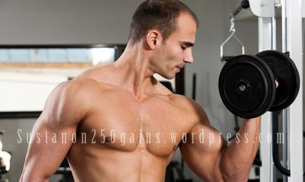 Sustanon 250 Bodybuilding Cycles For Performance Gains