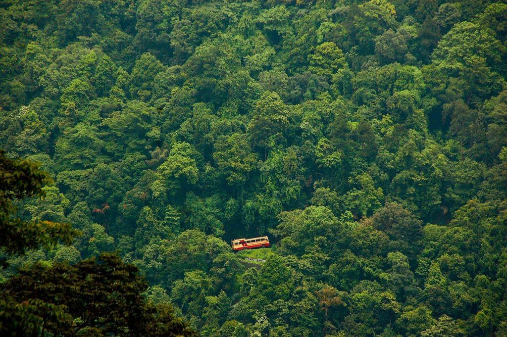 Top 5 Offbeat Places to Visit Near Bangalore for Nature