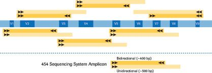 Applications Metagenomics Life Science System Application