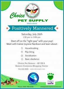 Positively Mannered Meet And Greet Choice Pet Supply Somers