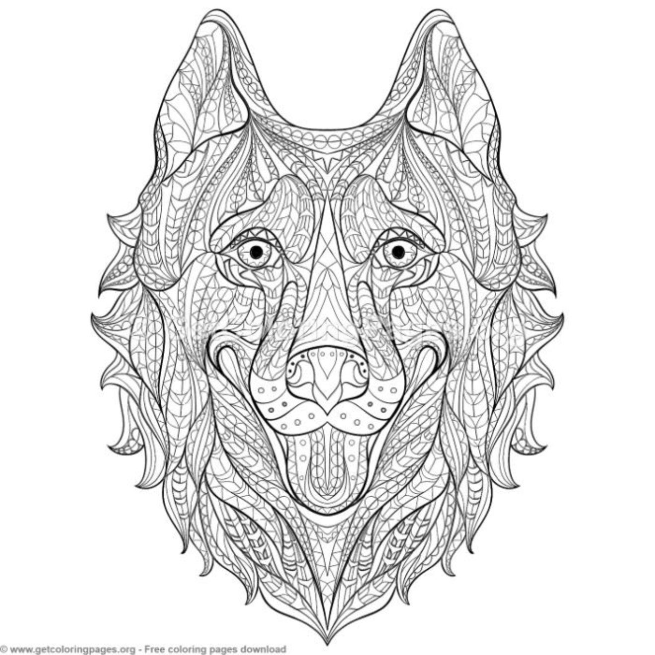 Patterned Zentangle Husky Coloring Pages Getcoloringpages Org Zentangle Animals Coloring Pages Zentangle