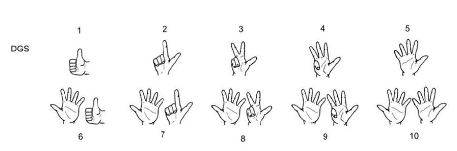 Numbers Dgs Deutsche Gebardensprache Sign Language Special Needs German Learn