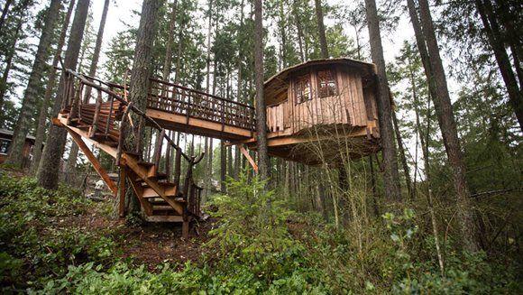 Treehouse Maison Dans Les Arbres Cabane Dans Les Arbres