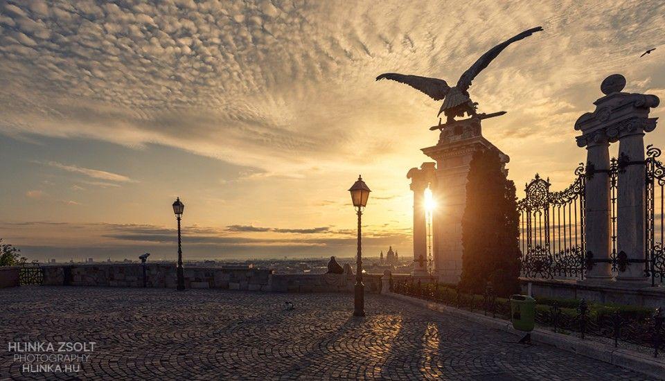 Budapest, Budai vár, turul madár