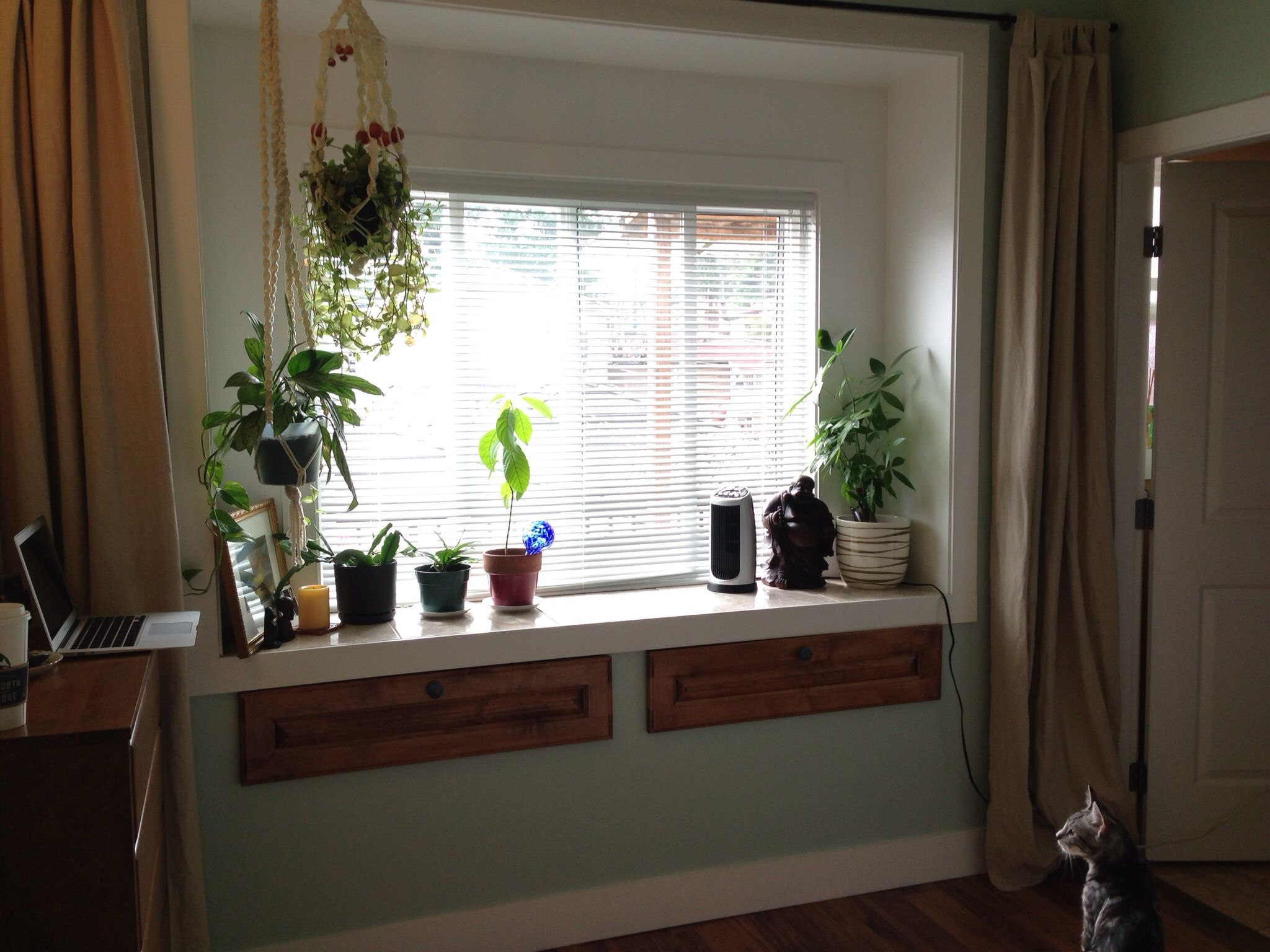 Bay Window With Hanging Plants, Relax