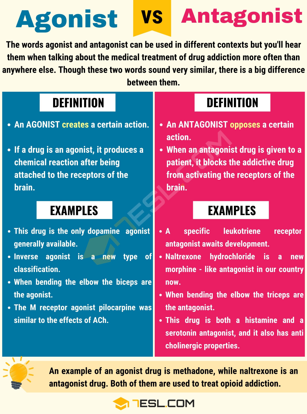 Agonist V Antagonist Difference Between 7esl Learn English Word Writing Skill Confusing Words Doe Pp Mean Paraphrase