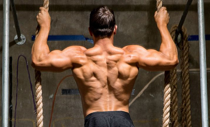 The Best Workouts To Build A Bigger Back Back Workout For Mass Back Exercises Great Back Workouts