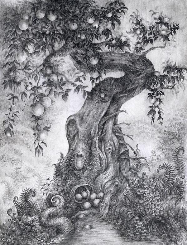 фантастический лес рисунок карандашом результате