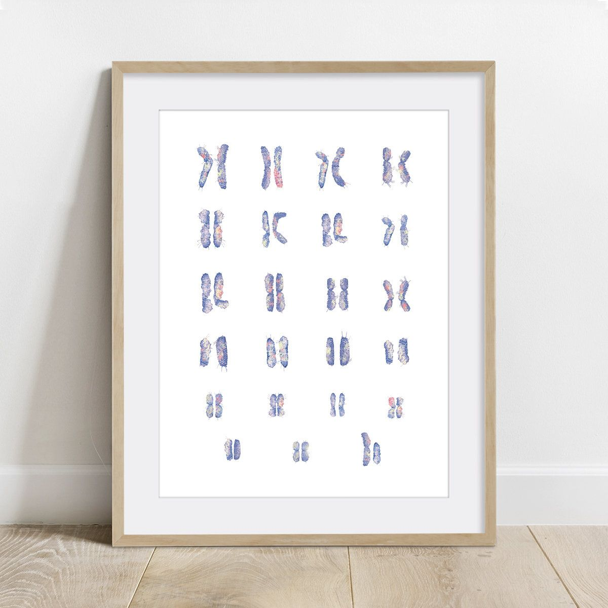 Male Chromosomes Karyotype Science Art Biology Print Dna Genomics Poster Wall Decor 5 X 7 In 8 X 10 In 11 X 14 In 12 X 16 In In 2020 Science Art Poster Wall Art