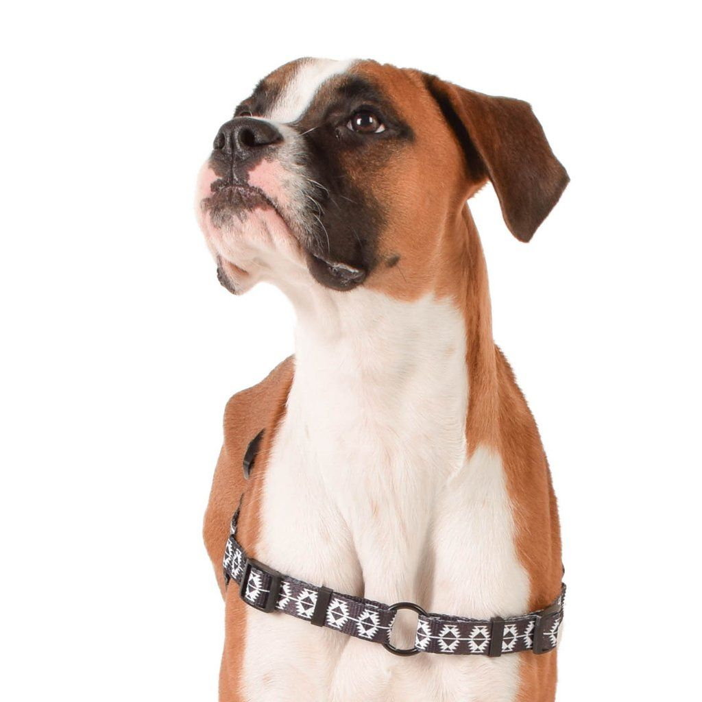 Indy Front Clip Harness Indie Dog Harness Pup