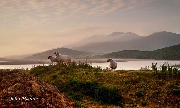 Near Cloghane Village on the Dingle Peninsula. www.john-hooton.com
