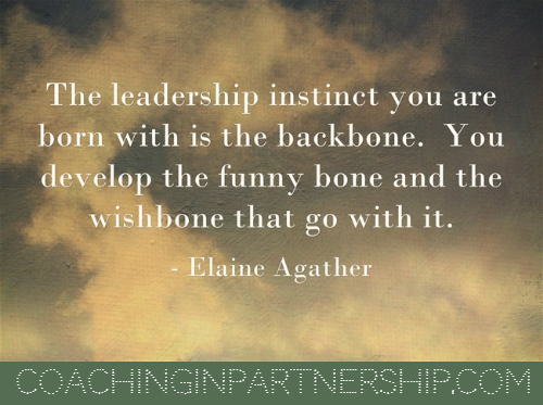 Leadership Instinct | Coaching in Partnership