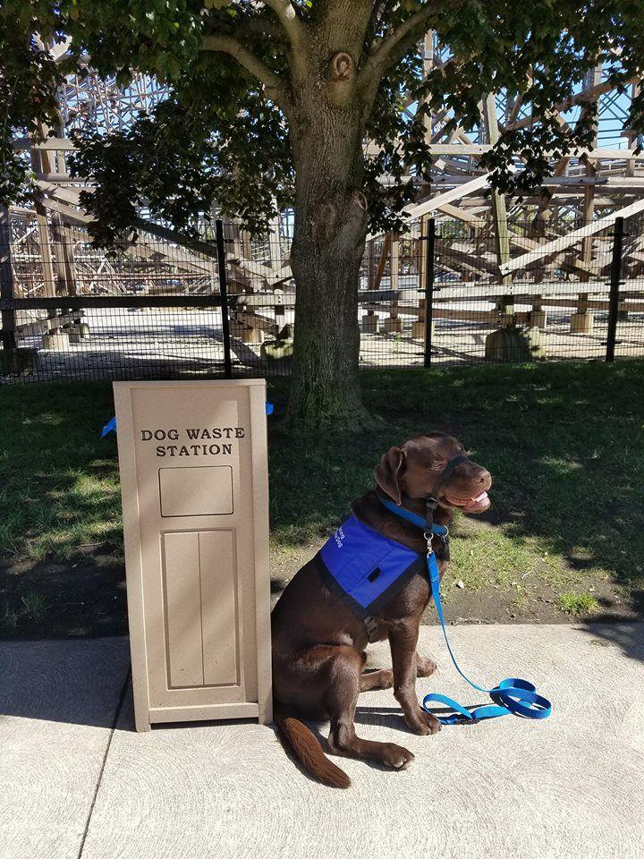 Cedar Point Ohio Has A Area For Service Dogs Cedar The Service