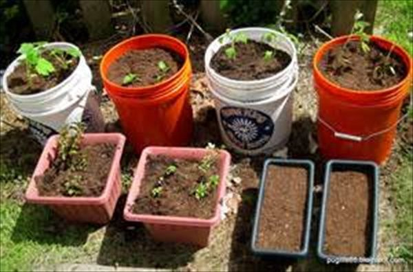 Simple Vegetable Gardening plans   EASY DIY and CRAFTS