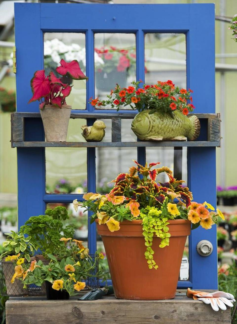 Photo Gallery Give A Container Garden For Mother S Day Pot Bunga Bunga Teratai