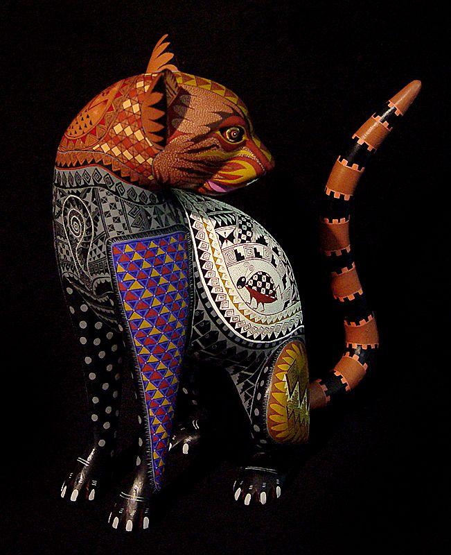 Cat By Jacobo Maria Angeles Ojeda San Martin Tilcajete
