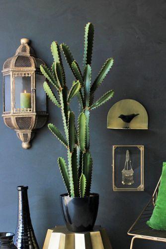 Abigail Ahern Great Sandy Faux Cactus Faux Cactus Plant Decor Cactus