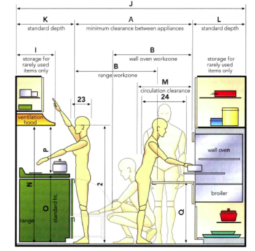 Interiors  anthropometric data for an ergonomic kitchen design ...