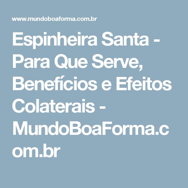 Espinheira Santa - Para Que Serve, Benefícios e Efeitos Colaterais - MundoBoaForma.com.br