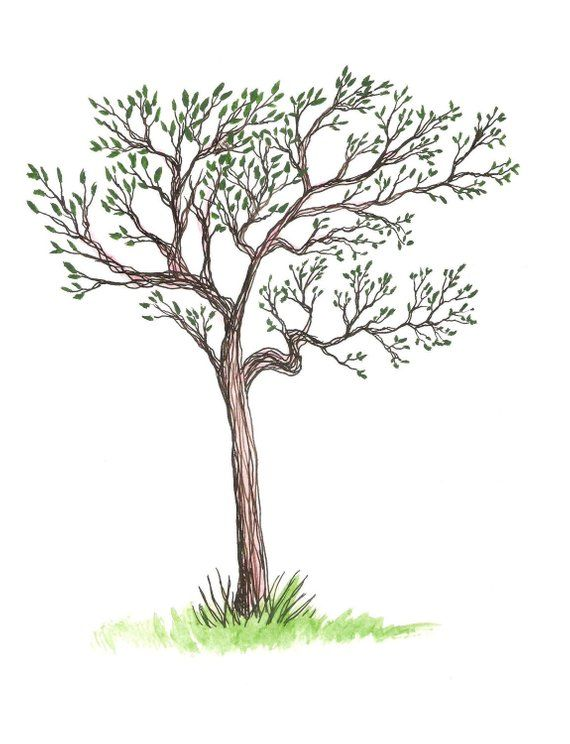 Treeling