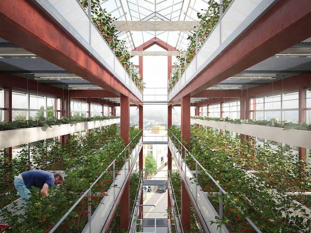 http://ecoinventos.com/el-futuro-de-la-agricultura-urbana-se-disena-en-francia/