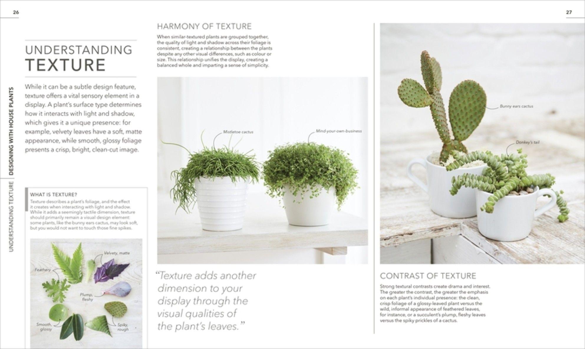 The RHS Encyclopedia of Houseplants