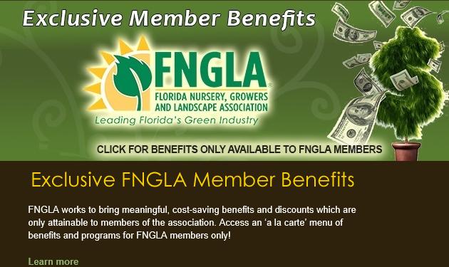 Fngla Florida Nursery Growers And Landscape Ociation