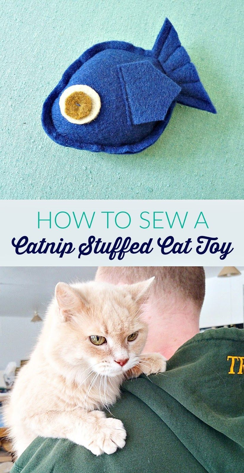 How to make your own catnip cat toy catsfunnyhilarious
