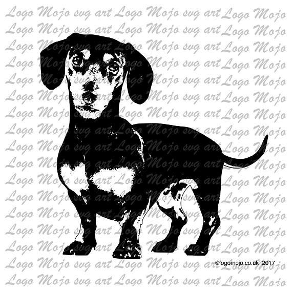 Dachshund Dog Svg Pdf Jpeg Jpg Png Files Vector Clipart Design