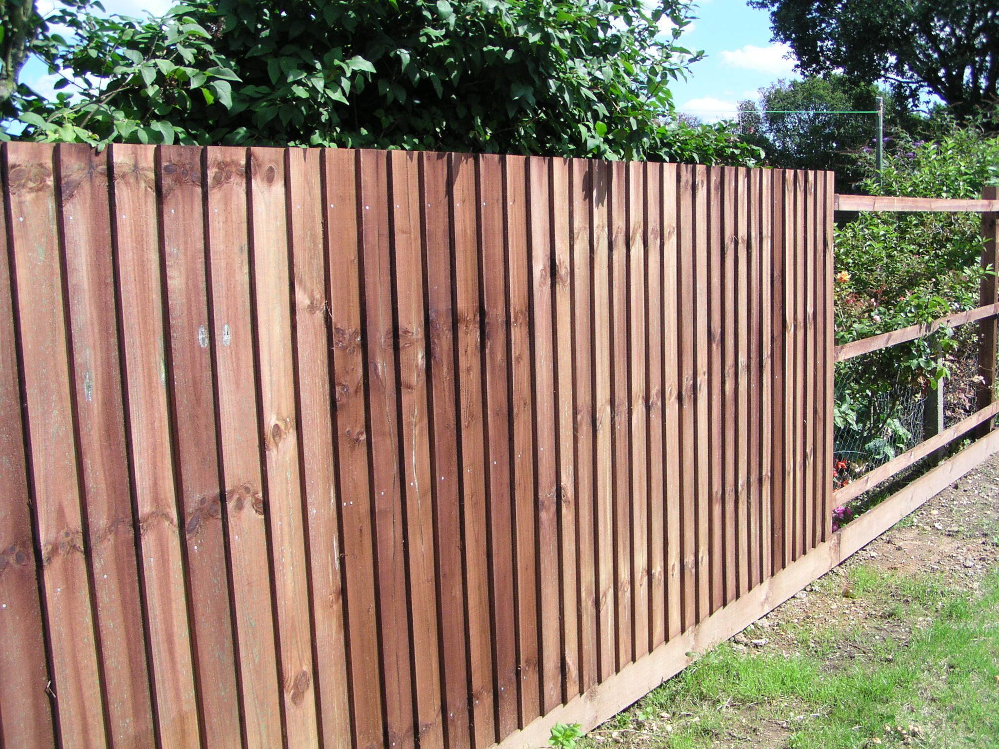 Nice 10+ Garden Fence Ideas That Truly Creative, Inspiring, And Low Cost