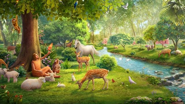 640 Gambar Binatang Yang Hidup Di Udara HD