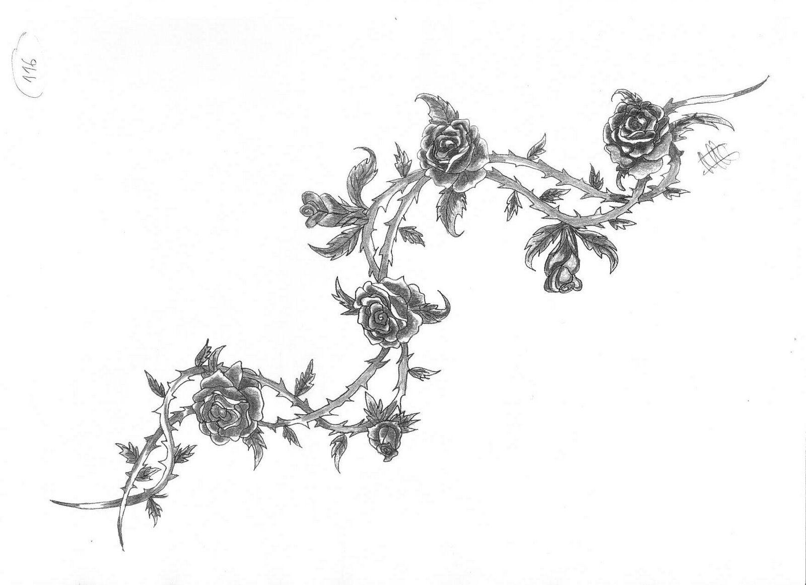 Enredaderas De Flores Para Pintar Imagui Dibujos Pinterest
