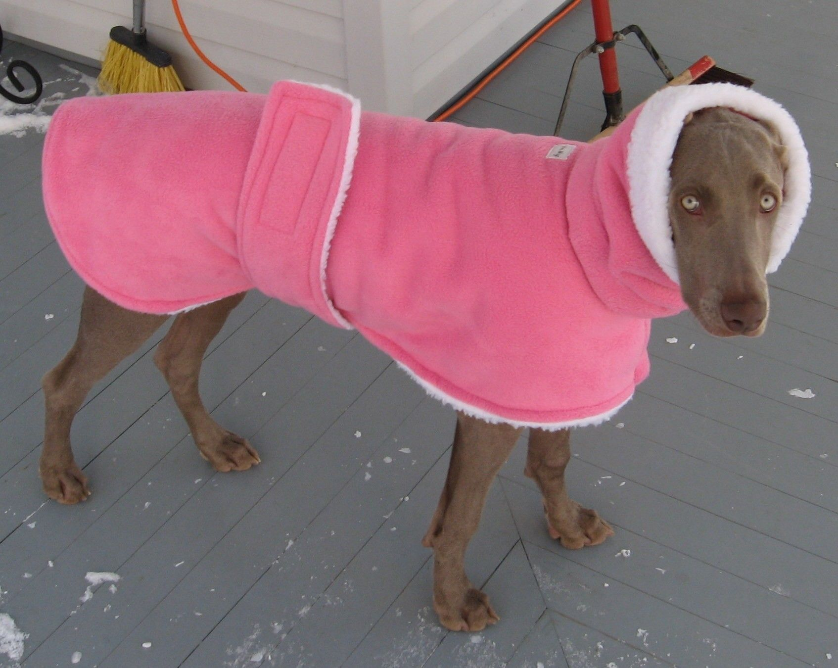 NEW Fabrics....Warmwags Medium or Large Fleece and Sherpa