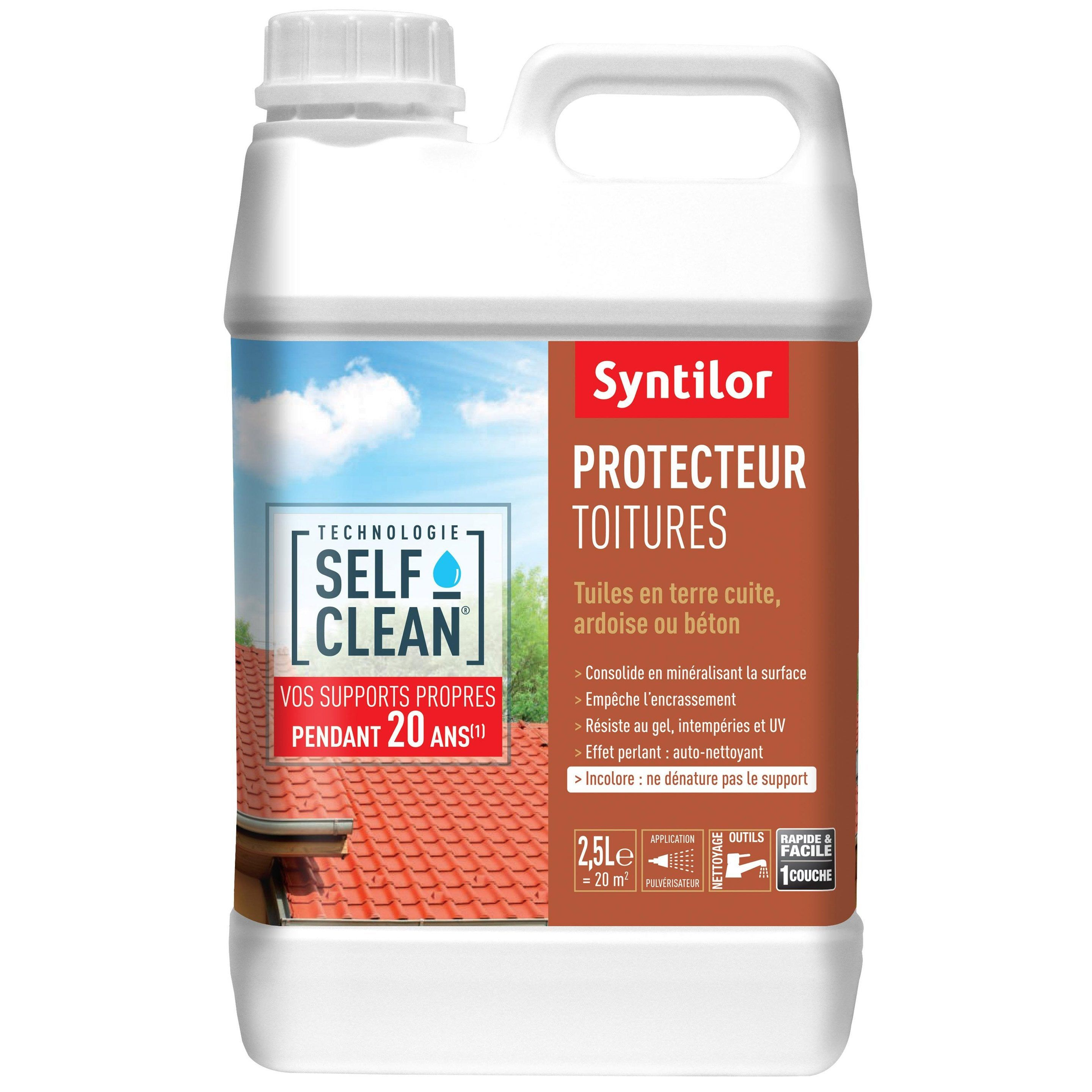 Revetement D Etancheite Toiture Self Clean Incolore 2 5l Syntilor Etancheite Toiture Toiture Et Etancheite