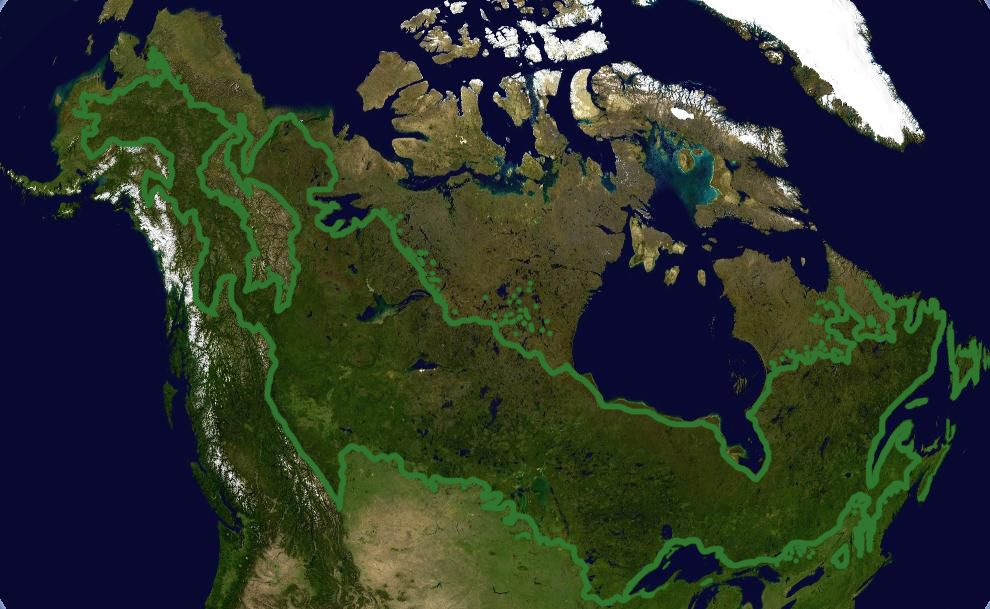 Map Of Canadian Boreal Forest Boreal Forest And Wetlands Are The