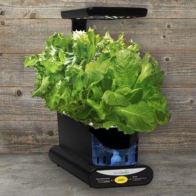 Aerogarden 3 Pod Heirloom Salad Greens Seed Kit Salad 640 x 480