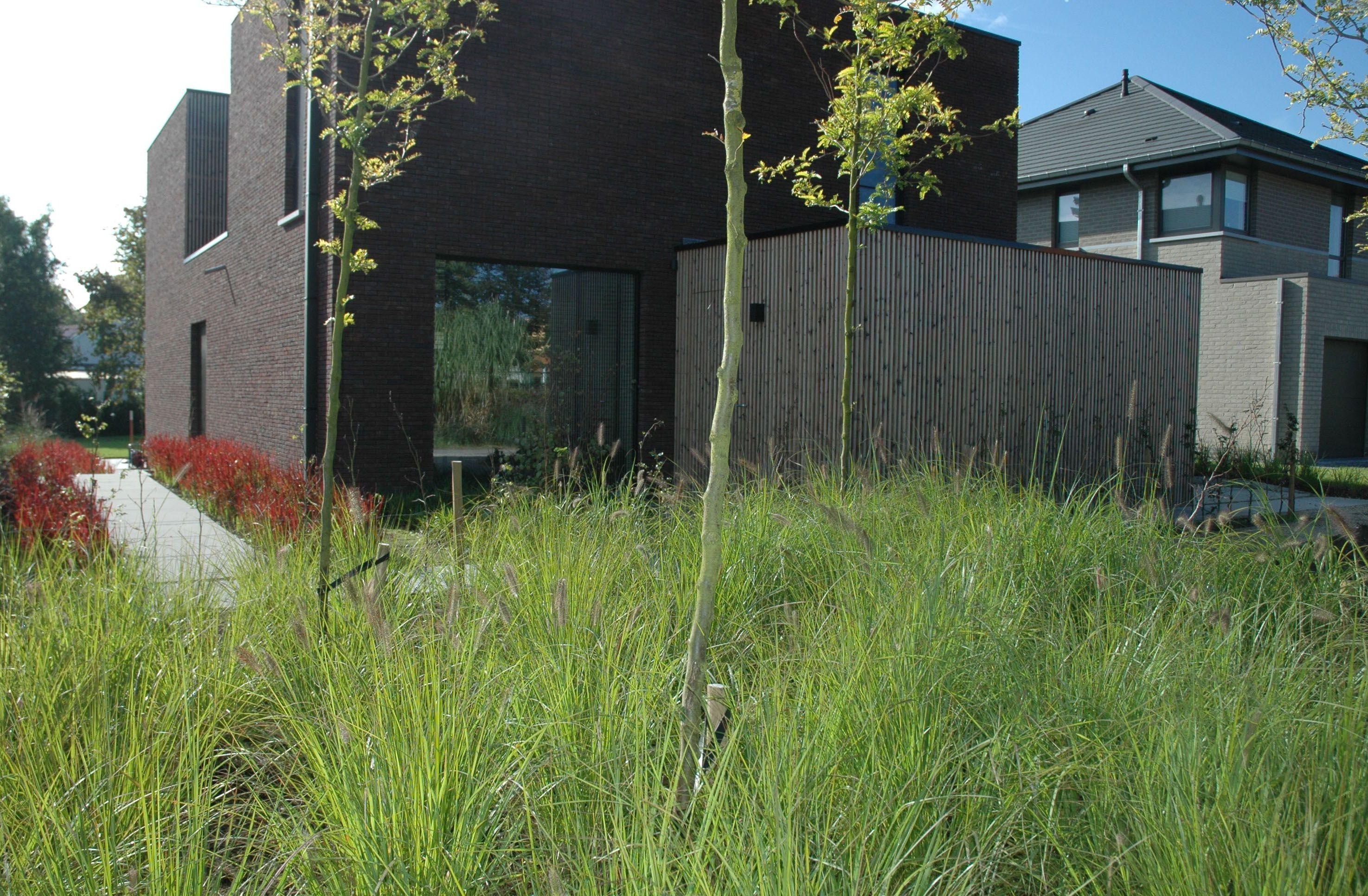 Moderne onderhoudsvriendelijke voortuin axis tuinarchitectuur