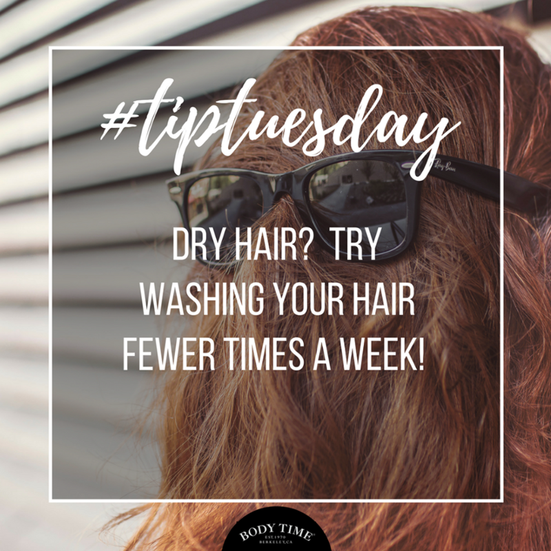 Dry Hair Looks Brittle And Feels Crunchy To The Touch There Are
