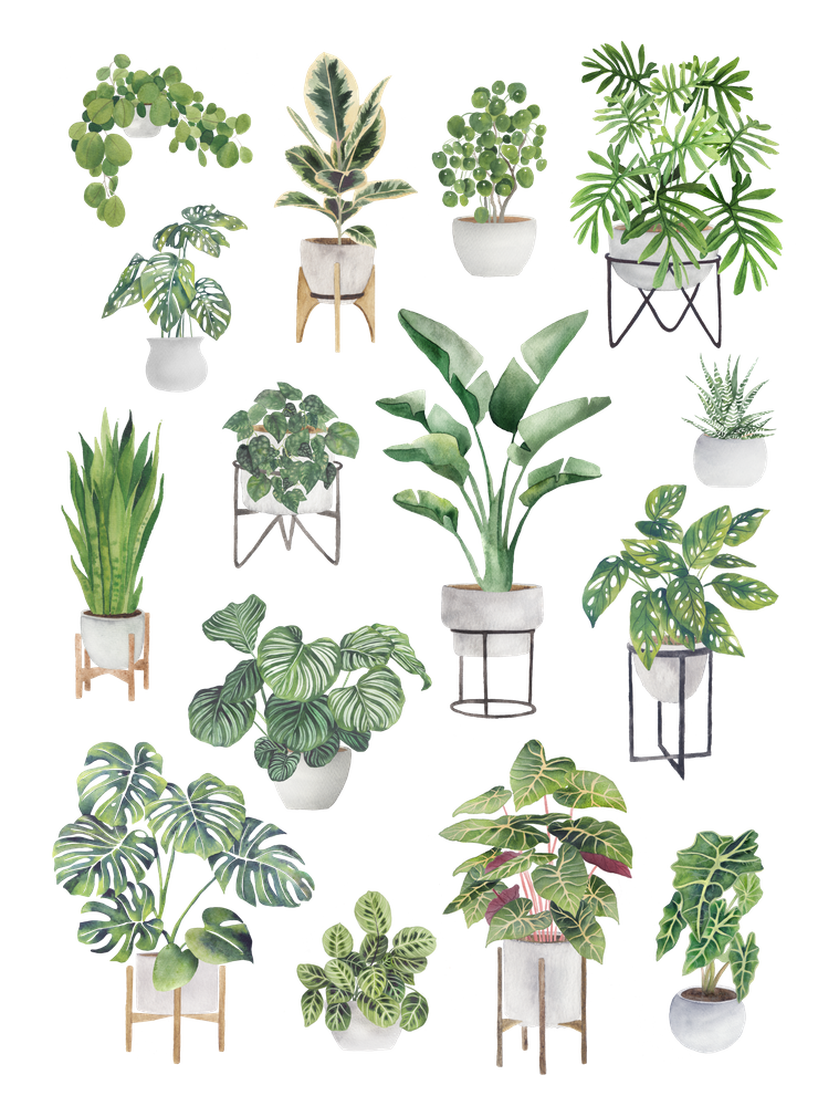 Potted Plants Collection 1 Art Print By Gusgus Stvaraonica X Small In 2020 Plants Plant Collection Plant Sketches