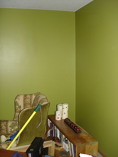 sherwin williams sassy green....possibly my new living room color ...